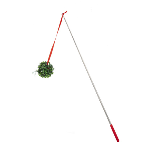 Selfie Stick With Hanging Mistletoe